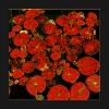 Seerosenblätter rot Kopie