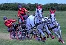 Pferdekutschenrennen 3