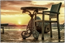 Venus Beach_IMG_8733 f