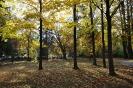 Kurpark Payerbach