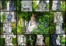 TT Zentralfriedhof