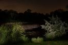 Teich Mannswoerth